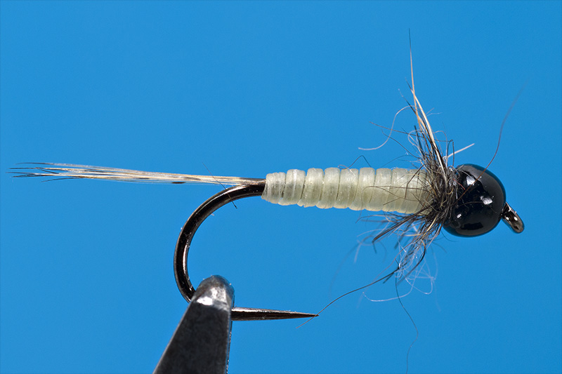 step-6-micro-baetis-nymph-tied-with-troutline-catgut-biothread-on-demmon-DSN-120BL-fly-hooks