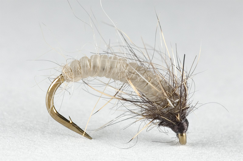 small caddis pupae tied with catgut on size #16 hook