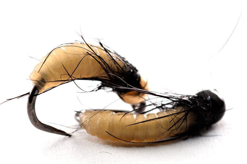 Tying with green catgut is mind blowing for Eastern fly fishing magazine