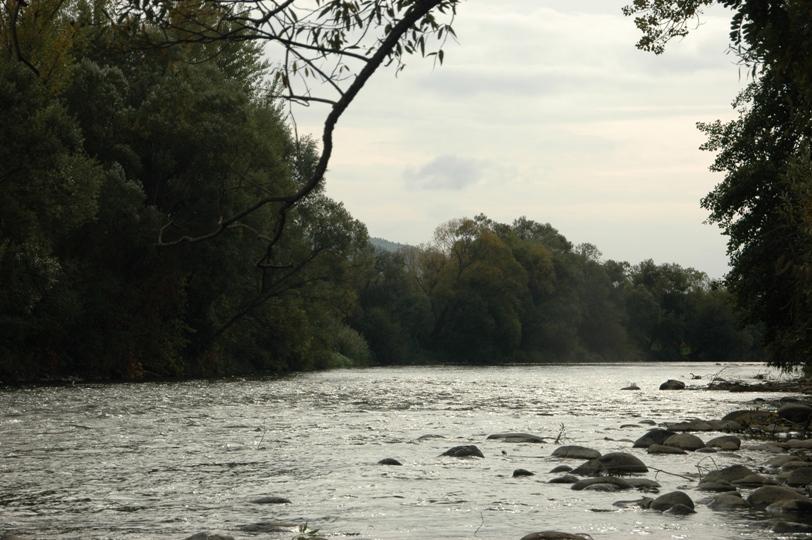 raul Mures