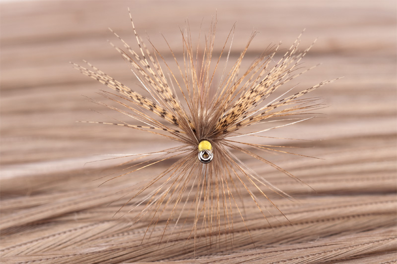 cdc mayfly for trout 11