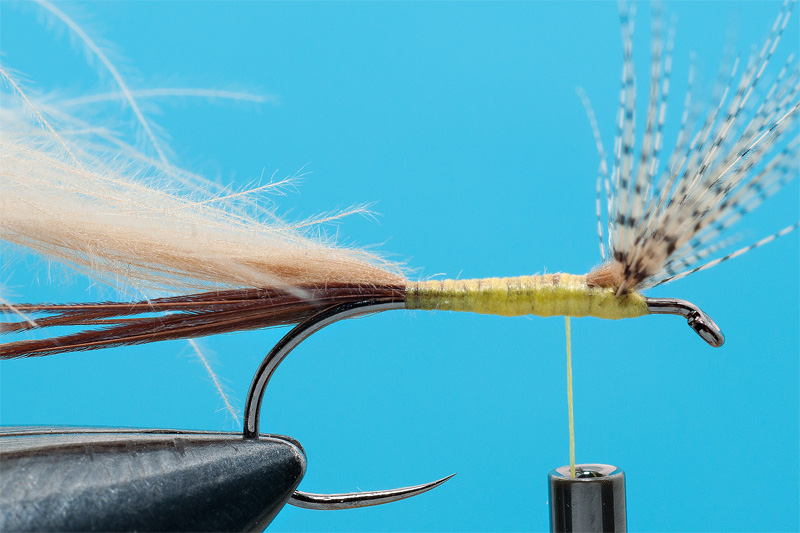 cdc mayfly for trout 3
