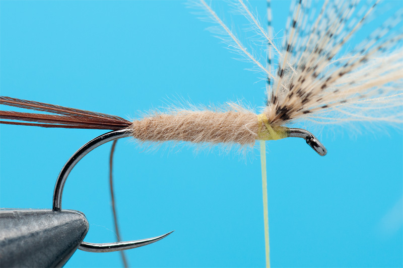 cdc mayfly for trout 4