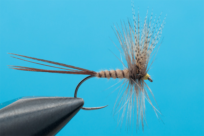 cdc mayfly for trout 9