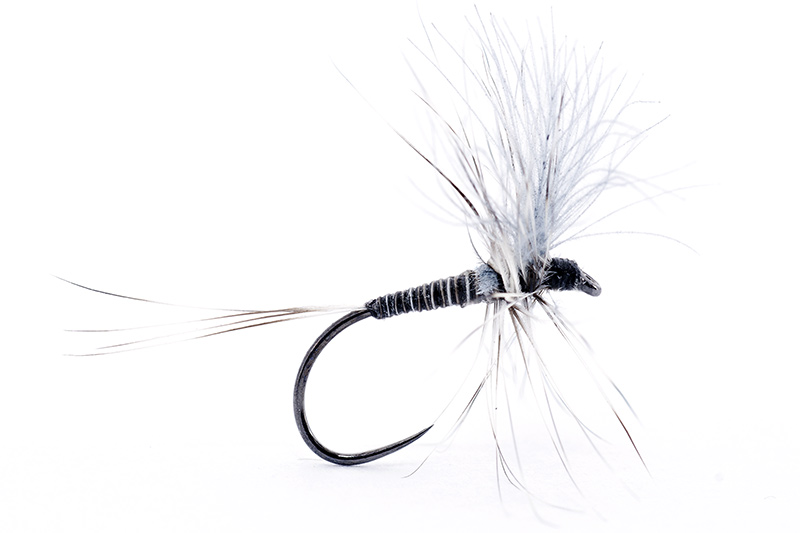 mosquito-dry-fly-from-troutline
