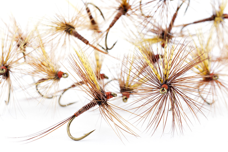 red-quill-dry-flies-catskill-style