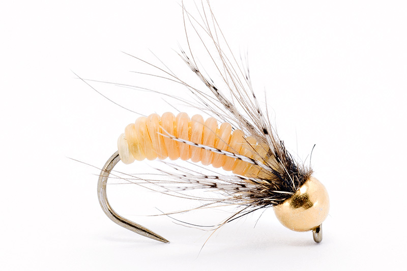 tying-catgut-pupa-step-8