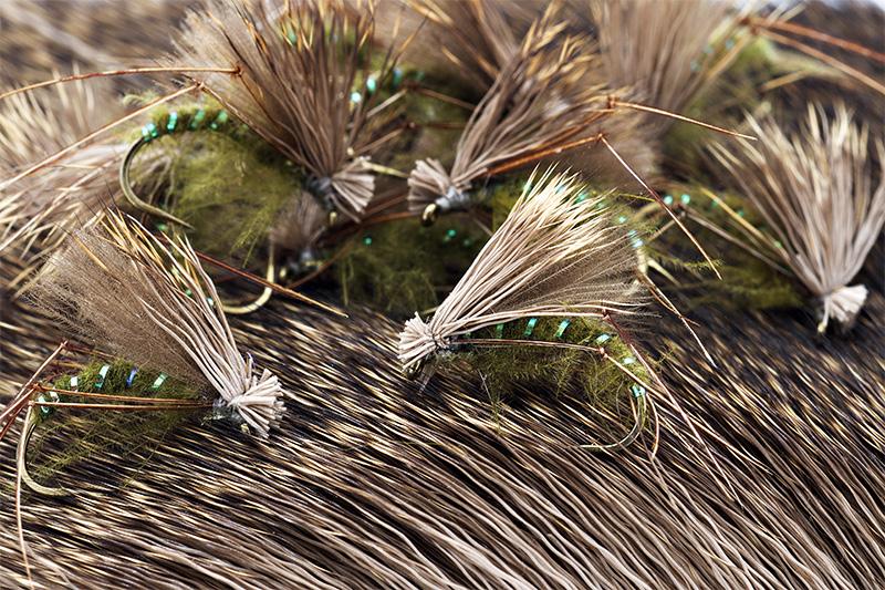 Hairs-and-pelts---restoring-deer-curved-hair-fibers