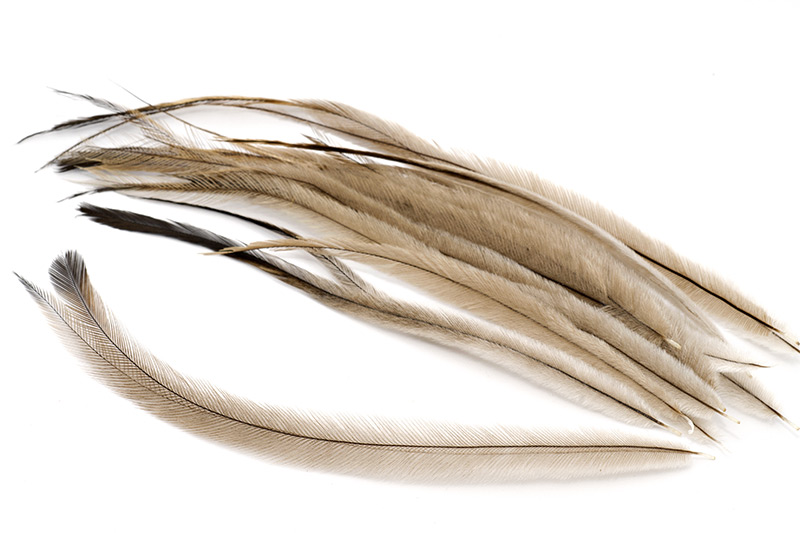 troutline-emu-feathers-for-fly-tying