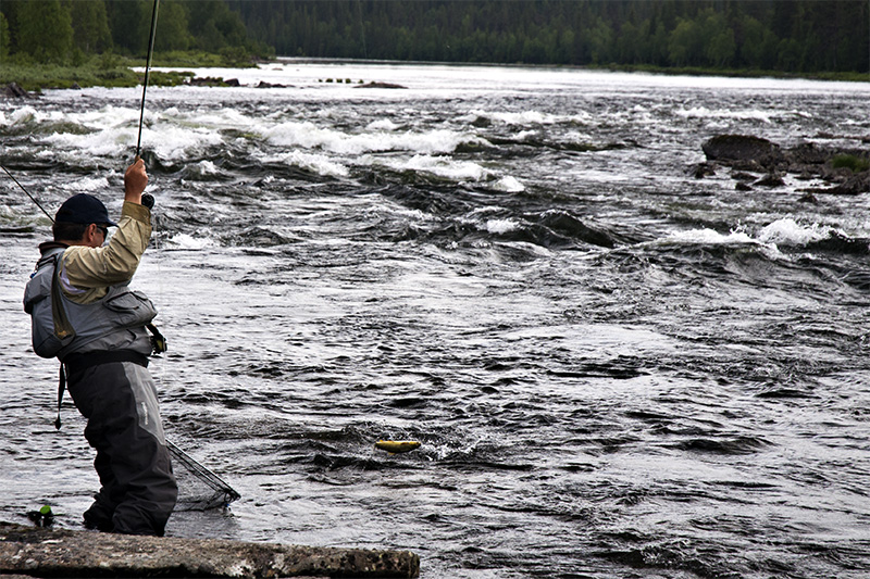 Mihai-with-a-trout-in-lapland.jpg